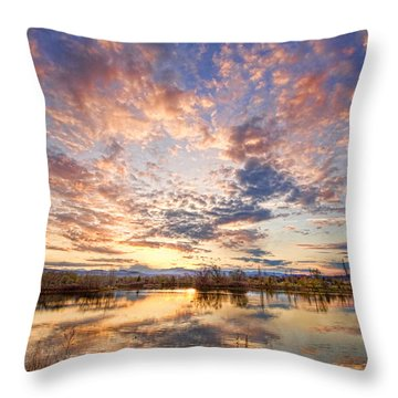 Golden Ponds Scenic Sunset Reflections 4 Throw Pillow by James BO  Insogna