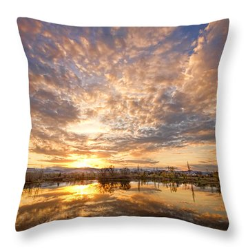 Golden Ponds Scenic Sunset Reflections 5 Throw Pillow by James BO  Insogna