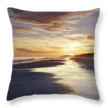 Golden Sands Throw Pillow by Phill Doherty