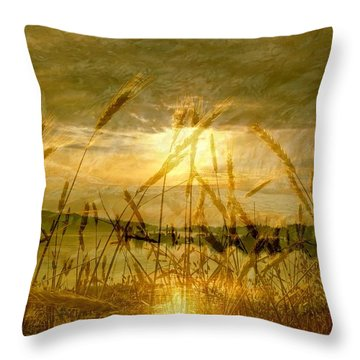 Golden Sunset Throw Pillow by Barbara St Jean