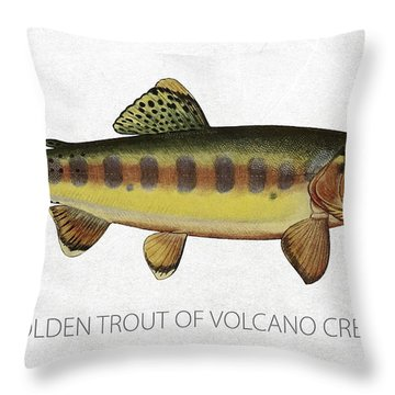 Golden Trout Of Volcano Creek Throw Pillow by Aged Pixel