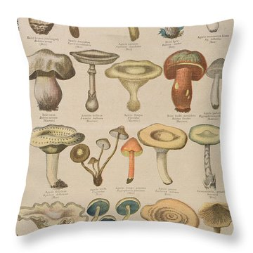 Good And Bad Mushrooms Throw Pillow by French School