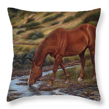 Good'ol Red Throw Pillow by Ricardo Chavez-Mendez