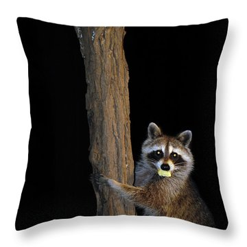 Gotcha The Cornbread Bandit Throw Pillow by Randall Branham