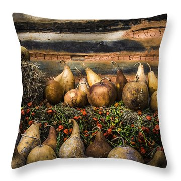 Gourds Throw Pillow by Debra and Dave Vanderlaan