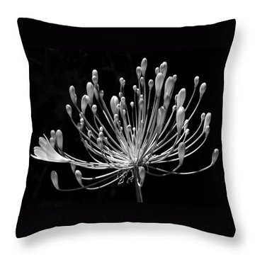 Grace Throw Pillow by Rona Black