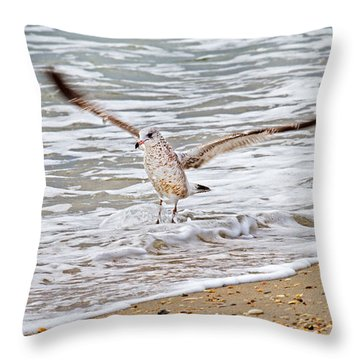 Graceful Landing Throw Pillow by Betsy Knapp