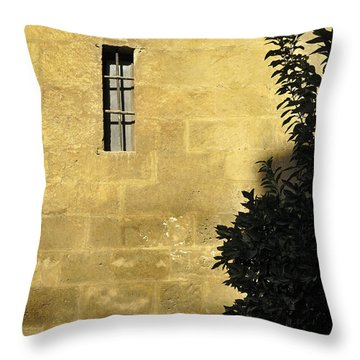 Granada Cathedral Throw Pillow by Guido Montanes Castillo