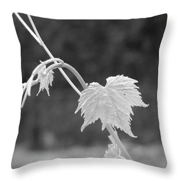 Grapevine  Throw Pillow by Heather L Wright