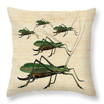 Grasshopper Parade Throw Pillow by Antique Images