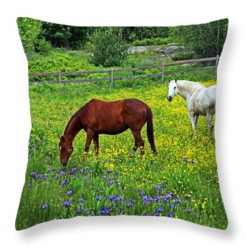 Grazing Amongst The Wildflowers Throw Pillow by Karol Livote