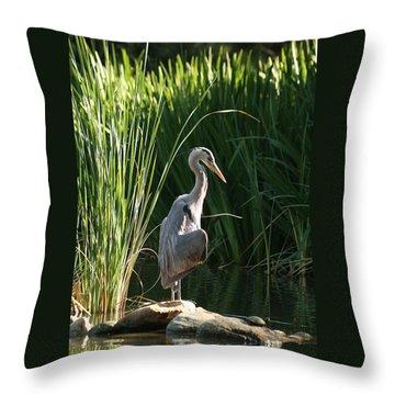 Great Blue Heron Throw Pillow by Ellen Henneke