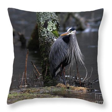 Great Blue Heron On The Clinch River Throw Pillow by Douglas Stucky