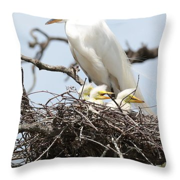 Great Egret Nest With Chicks And Mama Throw Pillow by Carol Groenen