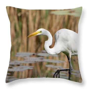 Great White Egret By The River Throw Pillow by Sabrina L Ryan