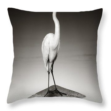 Great White Egret On Hippo Throw Pillow by Johan Swanepoel