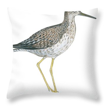 Greater Yellowlegs  Throw Pillow by Anonymous