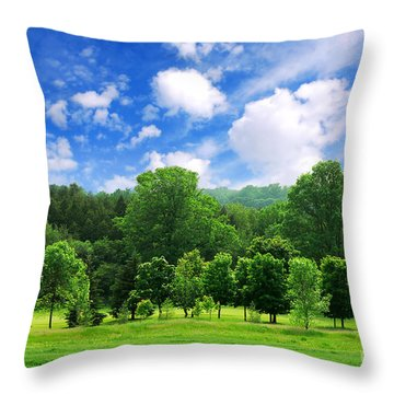 Green Forest Throw Pillow by Elena Elisseeva