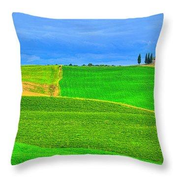 Green Green Grass Of Home Throw Pillow by Midori Chan