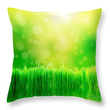Green Nature Background With Fresh Grass Throw Pillow by Michal Bednarek