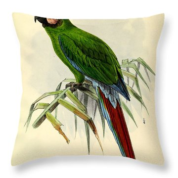 Green Parrot Throw Pillow by J G Keulemans