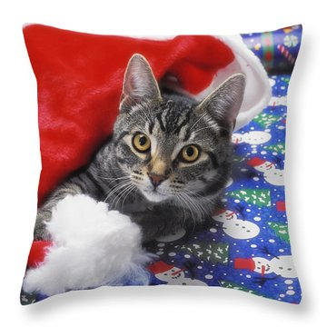 Grey Tabby Cat With Santa Claus Hat Throw Pillow by Thomas Kitchin & Victoria Hurst