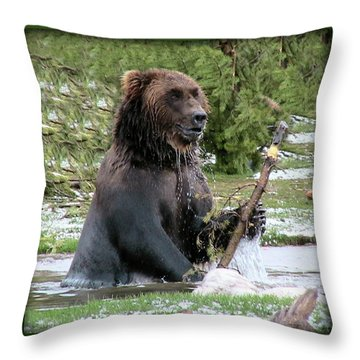 Grizzly Bear 07 Throw Pillow by Thomas Woolworth