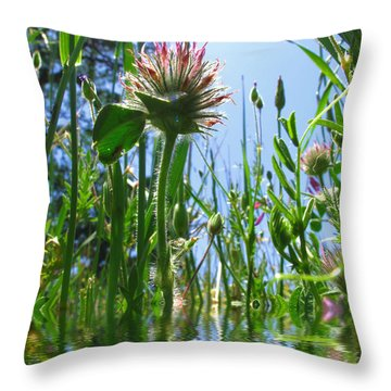 Ground Level Flora Throw Pillow by Joyce Dickens