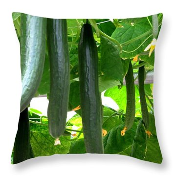 Growing Cucumbers Throw Pillow by Zina Stromberg