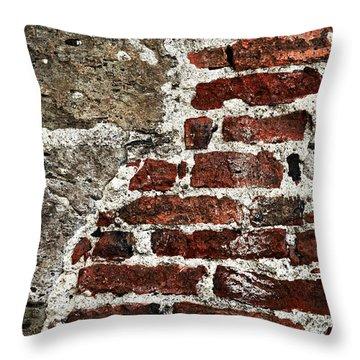 Grunge Brick Wall Throw Pillow by Elena Elisseeva