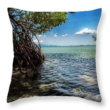 Guamache Beach Venezuela Panorama Throw Pillow by Mountain Dreams