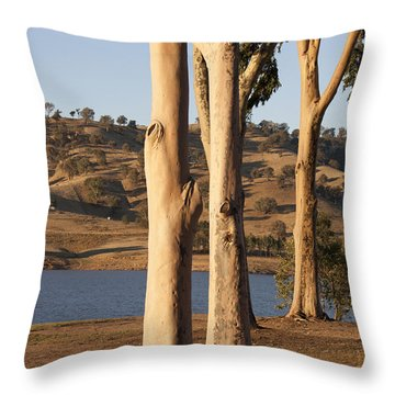 Guardians Of The Lake Throw Pillow by Linda Lees