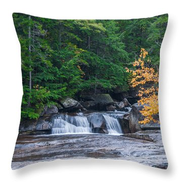 Gulf Hagas Brook Throw Pillow by Guy Whiteley