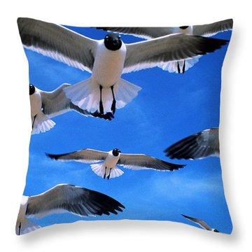 Gulls In Flight Throw Pillow by Geoge Ranalli