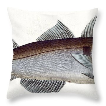 Haddock Throw Pillow by Andreas Ludwig Kruger