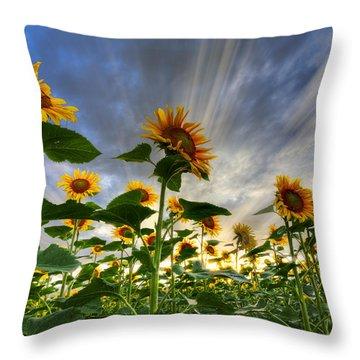 Halleluia Throw Pillow by Debra and Dave Vanderlaan