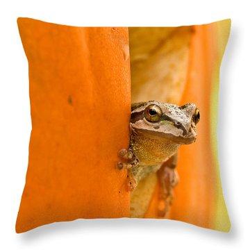 Halloween Surprise  Throw Pillow by Jean Noren