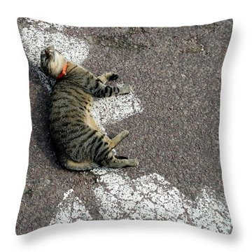 Handicat Parking Throw Pillow by Barbie Corbett-Newmin