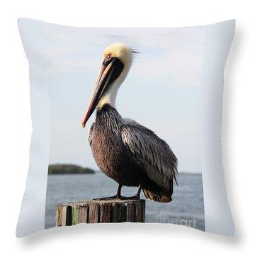Handsome Brown Pelican Throw Pillow by Carol Groenen