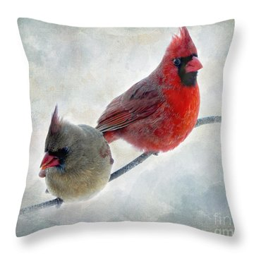 Handsome Couple IIi Throw Pillow by Debbie Portwood