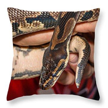 Hannibal Throw Pillow by Steve Harrington