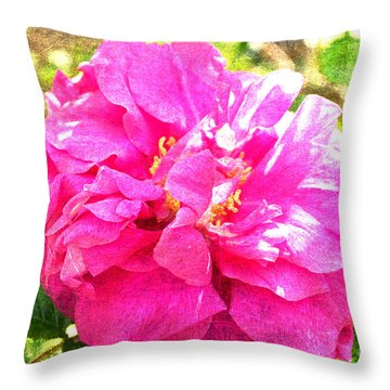 Hansa Overlay Throw Pillow by Alys Caviness-Gober
