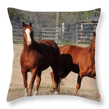 Happy Horses Hoofin-it Throw Pillow by Kim Pate
