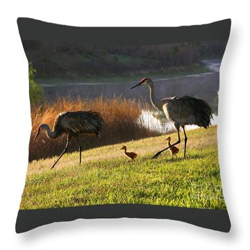 Happy Sandhill Crane Family Throw Pillow by Carol Groenen