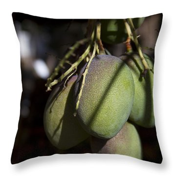 Hawaiian Mango Kihei Maui Hawaii Throw Pillow by Sharon Mau