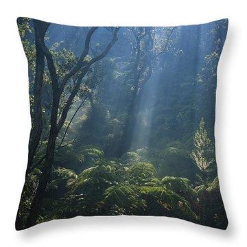 Hawaiian Rainforest Throw Pillow by Gregory G. Dimijian, M.D.