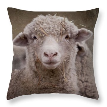 Hay Ewe Throw Pillow by Michelle Wrighton