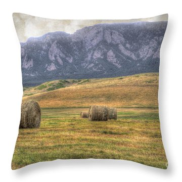 Hay There Throw Pillow by Juli Scalzi