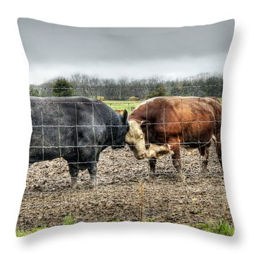 Head To Head Throw Pillow by Cricket Hackmann