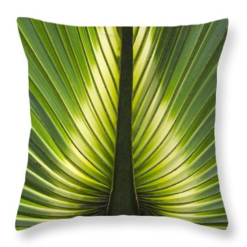Heart Of Palm Throw Pillow by Roger Leege